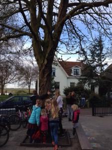schoolplein 4
